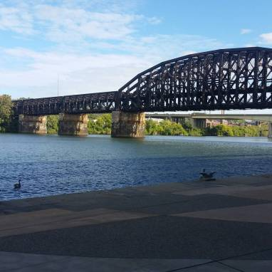 I can't run in Pittsburgh and not take a picture of a bridge and/or a river.