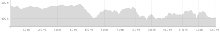 AthHalf elevation-strava